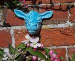 Blue Cow Head